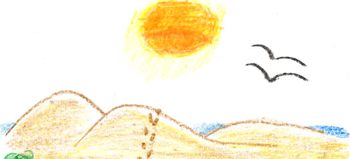 Dune Drawing700x300