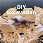 Learn how to make this do-it-yourself excavation kit using two household items with this step by step guide!