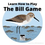 Learn about the Western Sandpiper and how to play a fun game that simulates how they find food with this activity!