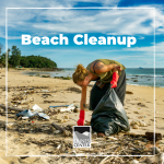 Want to learn how you can help protect marine organisms from plastic entanglement? Check out this activity!