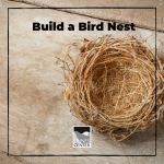 Build your own bird nest with this fun outdoor activity! Birds are some of the best engineers on the planet and have the ability to construct beautiful nests. Can you build a nest as good as a bird can?