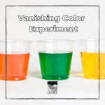 This experiment will demonstrate how color can be removed through the properties of bleach (make sure to do this one with a parent!)