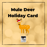 Learn about Mule Deer and make your own holiday card for friends and family with this activity!