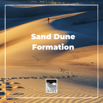 Create your own sand dunes with this activity that demonstrates how wind builds massive sand dunes over time!