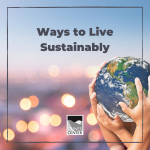 Do you know the different ways you can live sustainably? Make a poster with this activity to help your family remember the simple things they can do to live a more sustainable lifestyle.